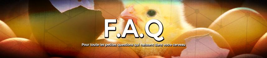 bannière FAQ